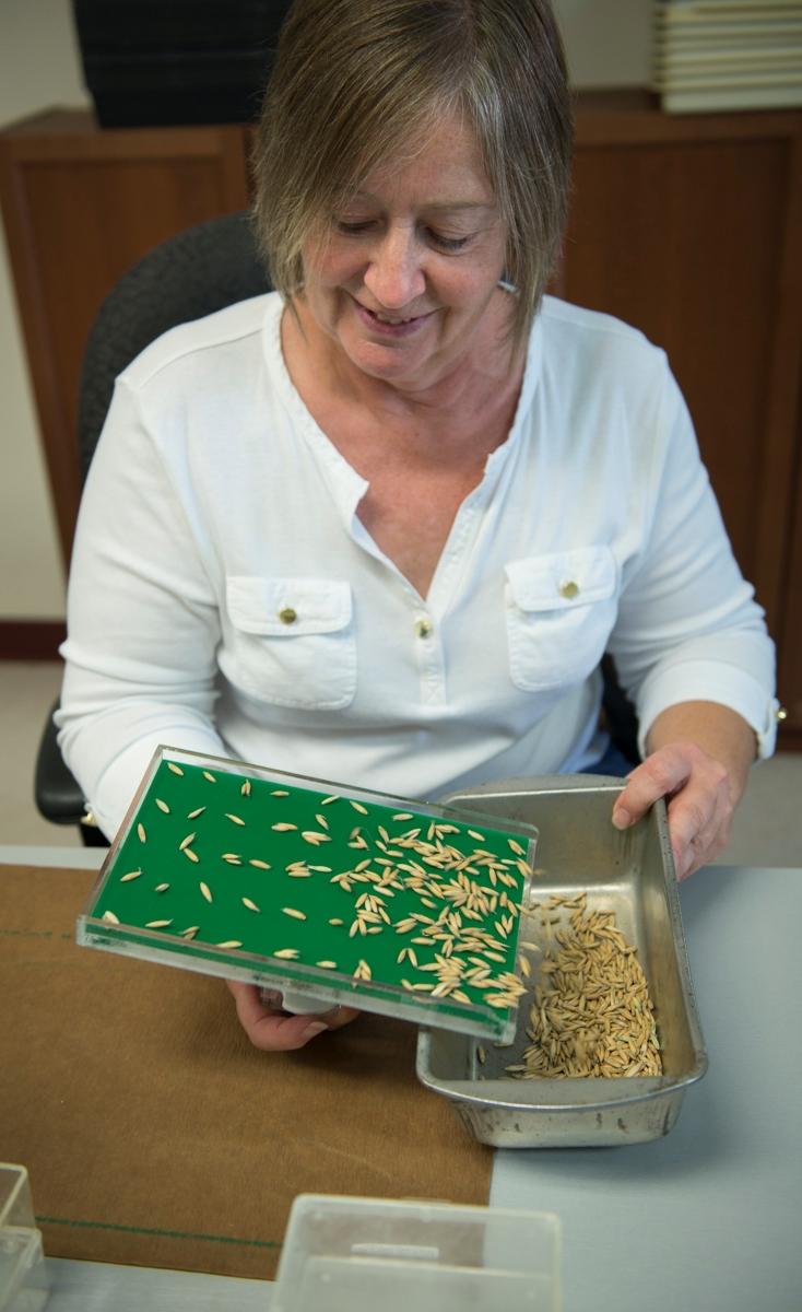 Debora Wheeler, Germination Analyst, Mixing and Planting Technologist